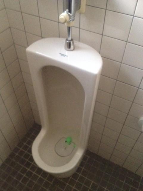 男子のトイレの作法に求めること