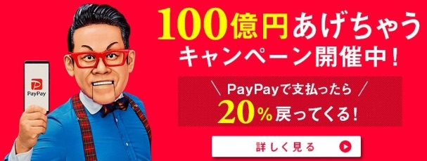 PayPay祭り、わたしの履歴と今後の活用考察
